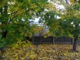 drugniy_info_odnoklass_osen20120122_11-t.jpg