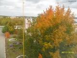 drugniy_info_odnoklass_osen20120122_16-t.jpg