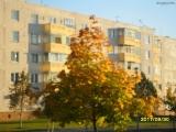 drugniy_info_odnoklass_osen20120122_19-t.jpg