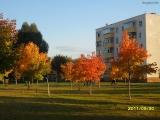 drugniy_info_odnoklass_osen20120122_20-t.jpg