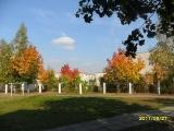 drugniy_info_odnoklass_osen20120122_27-t.jpg