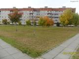 drugniy_info_odnoklass_osen20120122_37-t.jpg