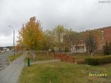 drugniy_info_odnoklass_osen20120122_4-t.jpg