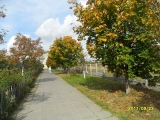 drugniy_info_odnoklass_osen20120122_41-t.jpg