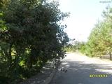 drugniy_info_odnoklass_osen20120122_45-t.jpg