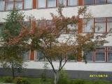 drugniy_info_odnoklass_osen20120122_47-t.jpg