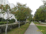 drugniy_info_odnoklass_osen20120122_56-t.jpg