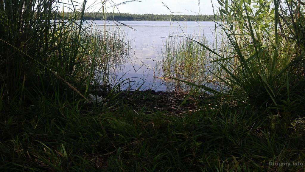 Материнское озеро7